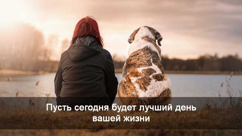 девушка с собакой на берегу