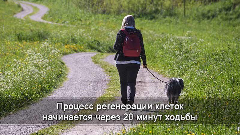 ходьба
