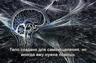 самоисцеление организма